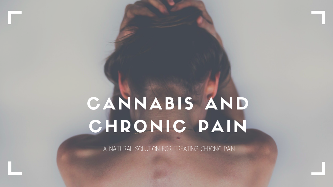 Cannabis and Chronic Pain