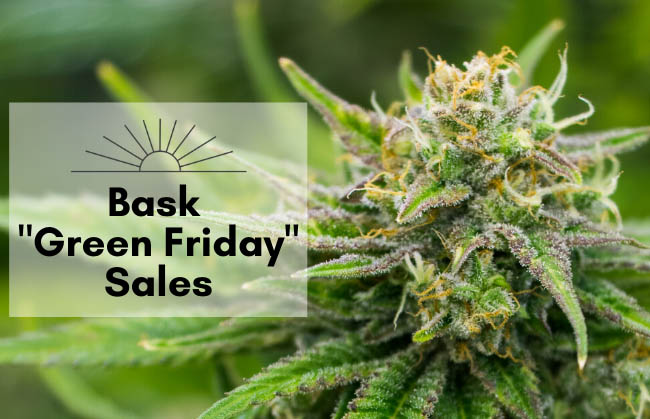 "Bask ""Green Friday"" Deals"